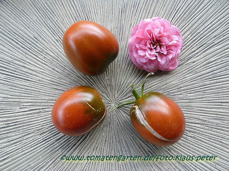 tomaten atlas detailansicht black plum. Black Bedroom Furniture Sets. Home Design Ideas